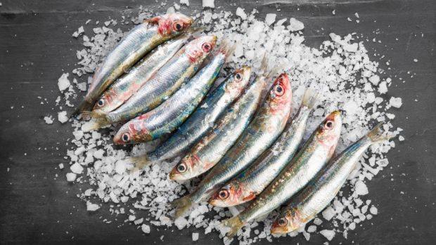 Receta de sardinas marinadas con tomate y ajo 2