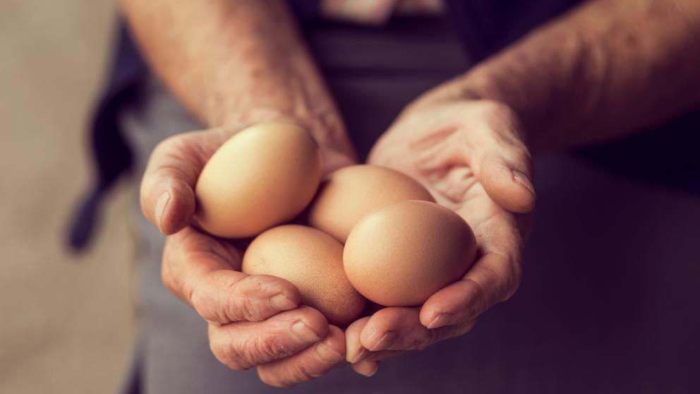 Photo of Cómo saber si un huevo es fresco