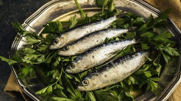 Receta de sardinas rellenas de sanfaina con tomates al horno