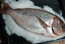 Photo of Receta de pargo a la sal