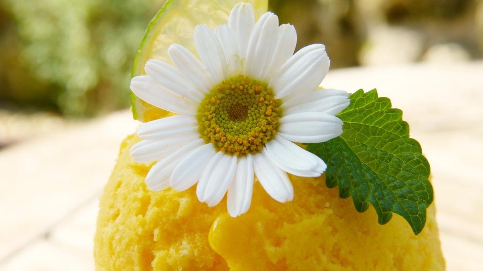 Receta de Helado de yogur y mango 1