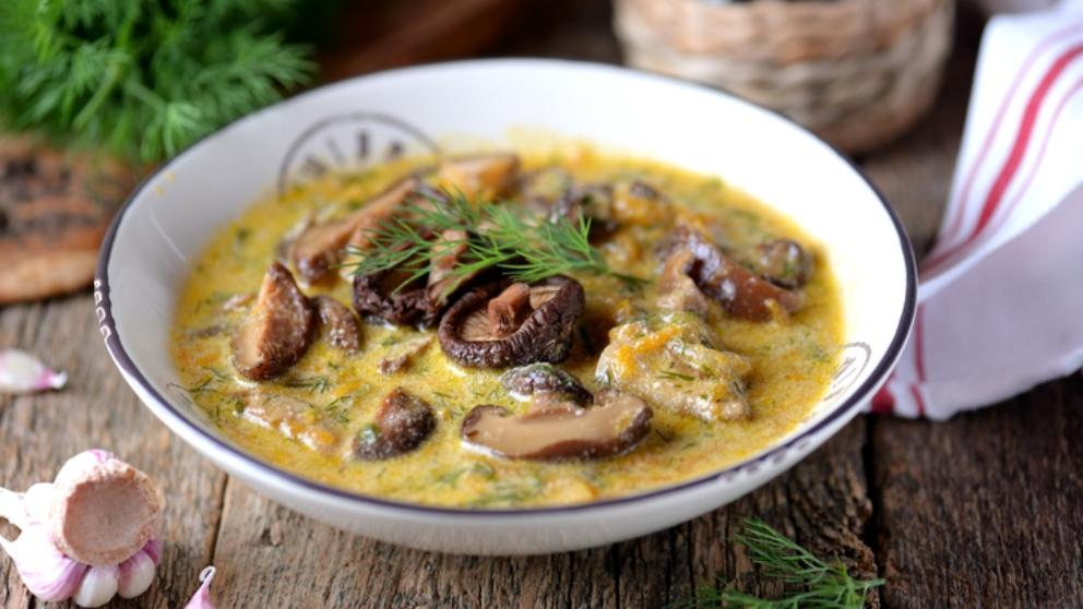 Photo of Receta de sopa picante de setas