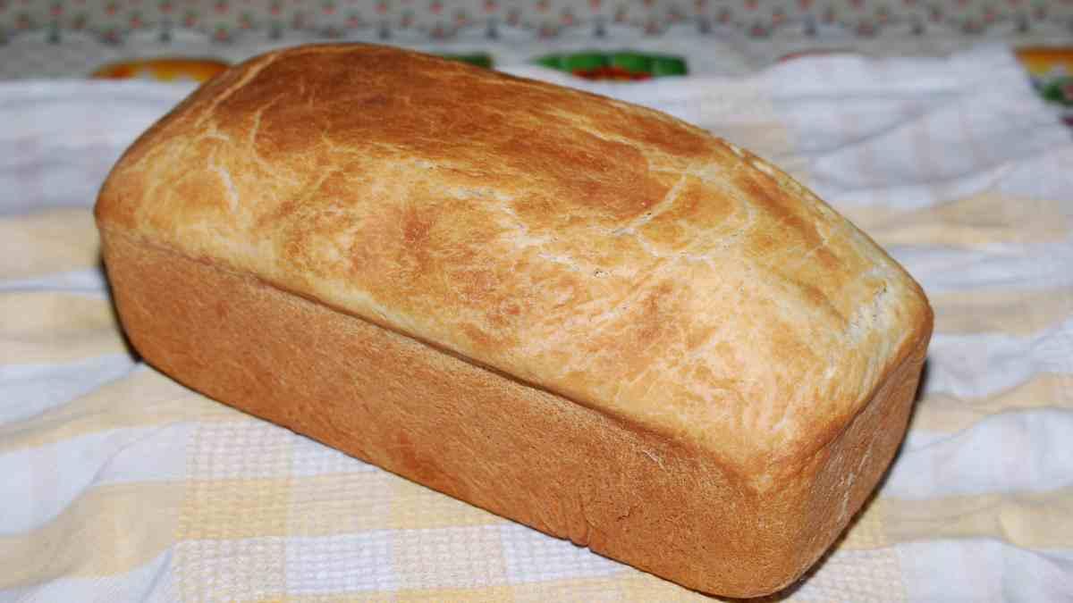 Photo of ¿Cómo hacer pan de nata?