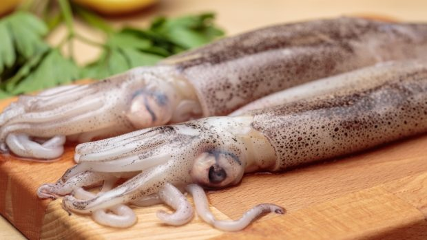 Receta de calamar relleno de morcilla
