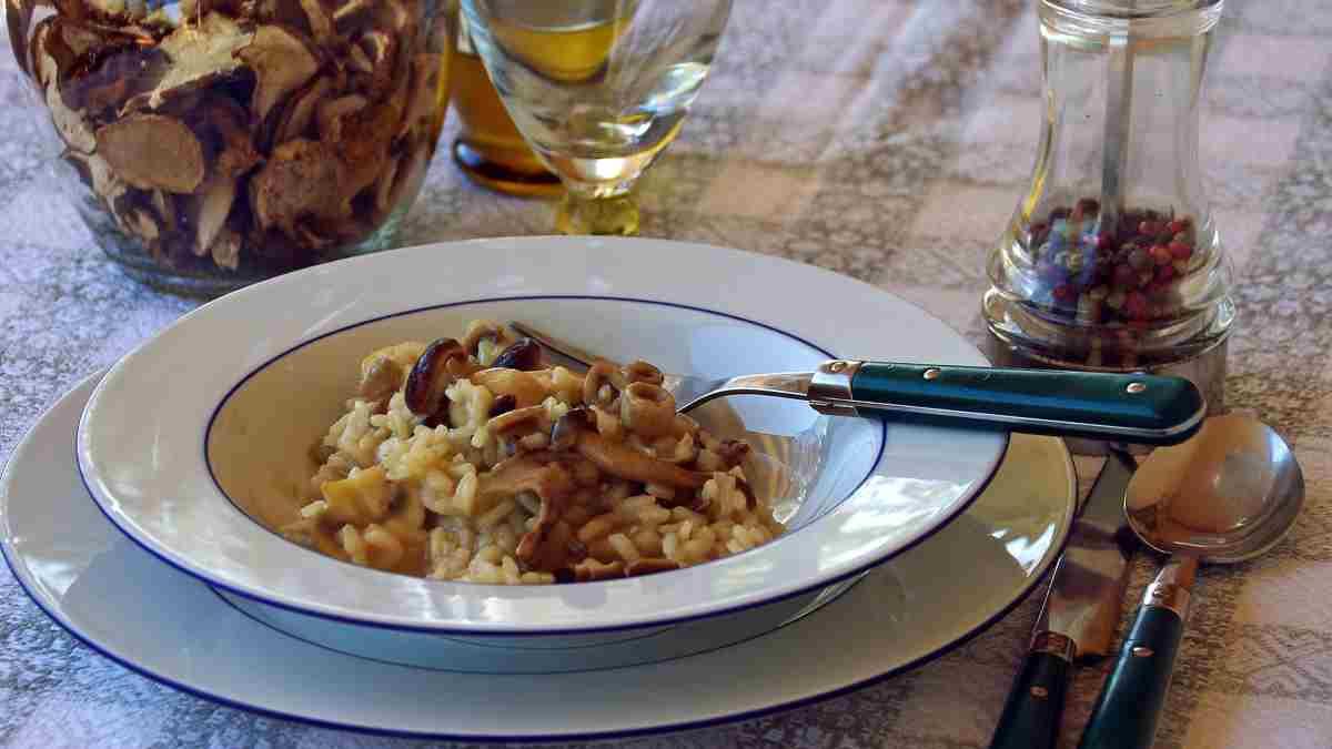 Photo of Receta de Risotto de champiñones con pollo y azafrán