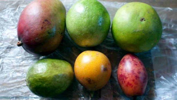 Granito casero de mango y maracuyá