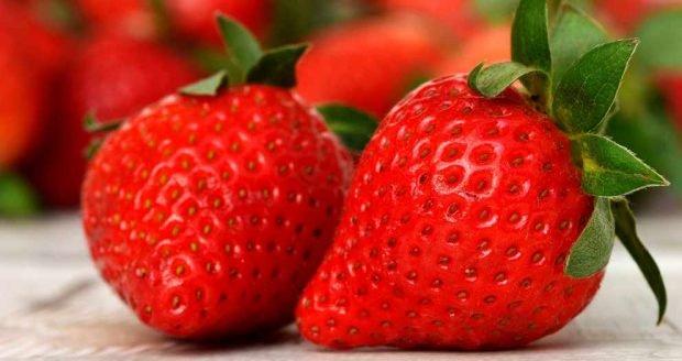 Receta de sorbete de yogurt de fresa