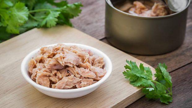 Receta de lasaña de pepino frío, atún y aguacate