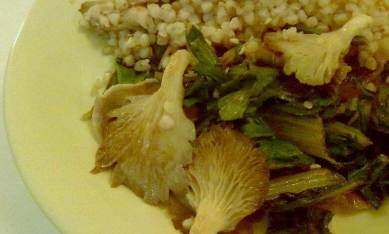 Receta de Cazuela de hinojo y trigo con setas 1
