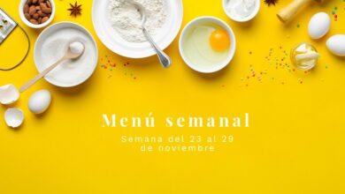Semana del 23 al 29 de noviembre de 2020 17