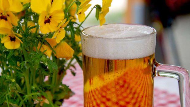 Hacer cerveza en casa