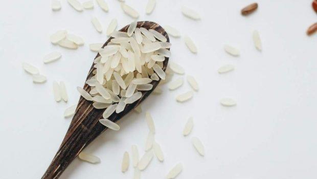 Risotto con mejillones pelados: la receta ideal para disfrutar en familia
