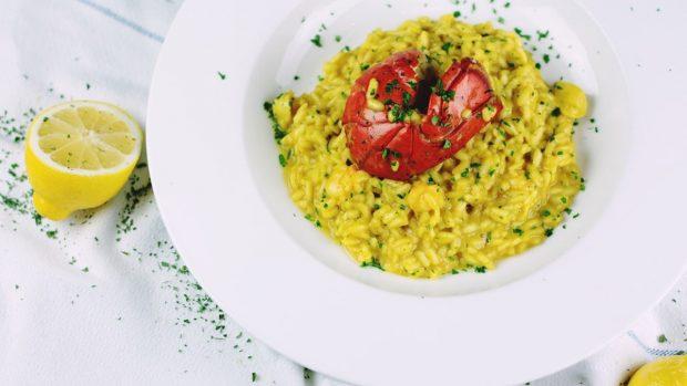 Las 5 mejores recetas de langosta para disfrutar al máximo del rey del mar