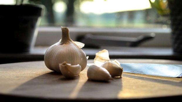 Pulpo con sopa de ajo, receta fácil paso a paso