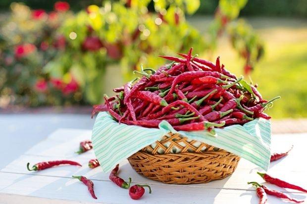 Enchilada mexicana: ingredientes para una receta espectacular