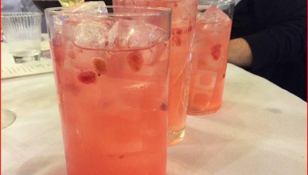 Bebidas de ginebra