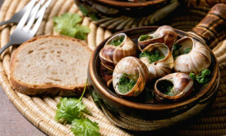 5 recetas de caracoles para descubrir los sabores más tradicionales 1