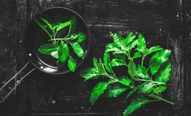 Receta de salsa de albahaca, aceite de oliva y ajo: perfecta para una pasta o pescado