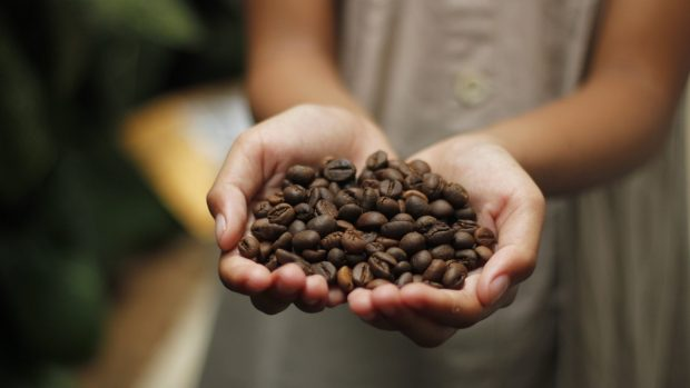 Granos de cafe