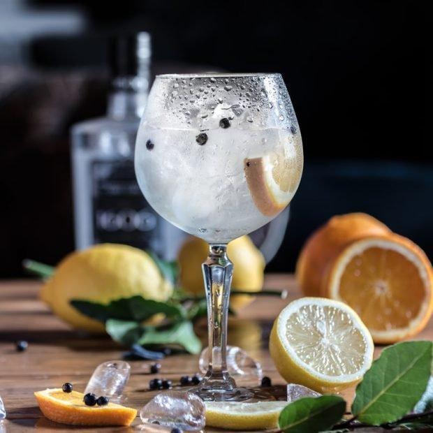 El cóctel para los amantes de la ginebra 2