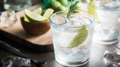 El cóctel para los amantes de la ginebra 6