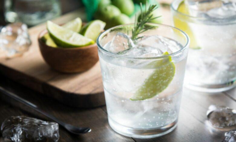 El cóctel para los amantes de la ginebra 1