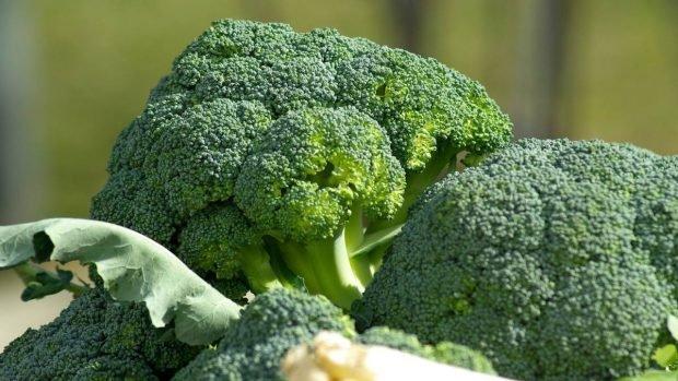 Pastel de brócoli con queso para microondas, receta saludable lista en 15 minutos