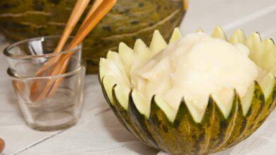 Sorbete de melón y melocotón, receta casera 3