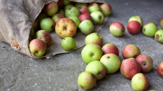 Tarta de manzana con ron
