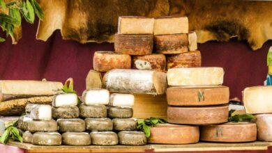 ¿Cuáles son los quesos más grasos que se pueden encontrar en el mercado? 1