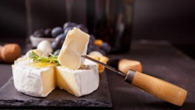 Queso brie vegano, receta para disfrutar de un queso sin leche 2