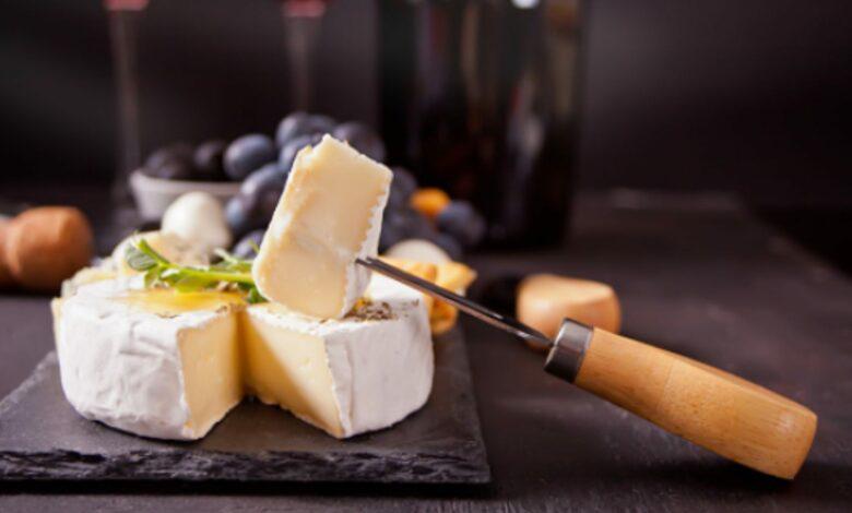 Queso brie vegano, receta para disfrutar de un queso sin leche 1